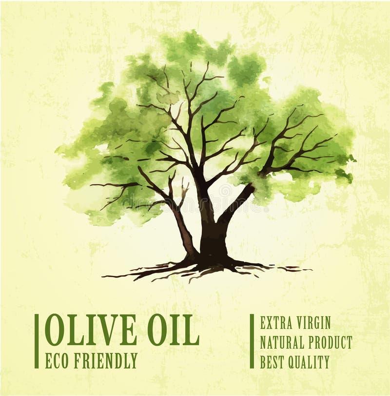 与水彩的手拉的橄榄树例证 免版税库存照片