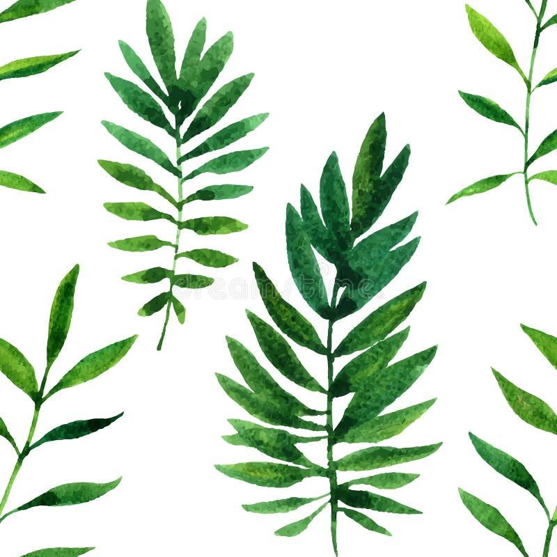 与水彩绿色叶子的传染媒介无缝的样式 皇族释放例证