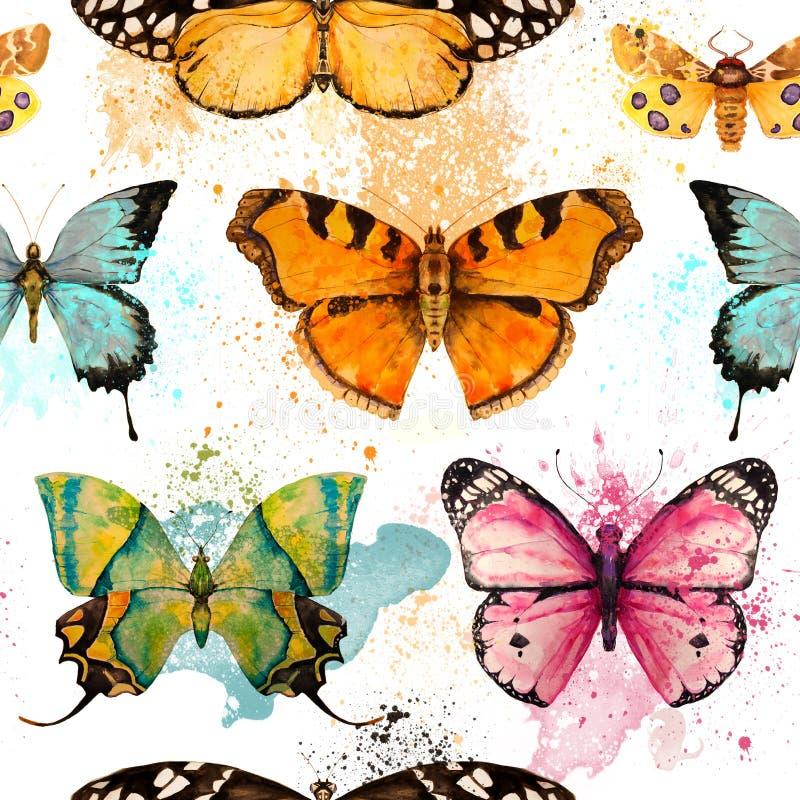 与水彩蝴蝶的无缝的样式 库存例证