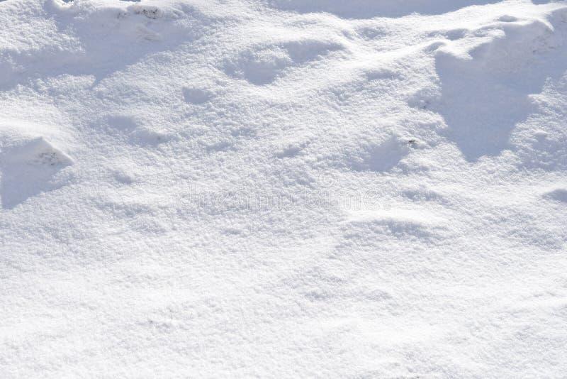 与阴影的雪小山 免版税库存图片
