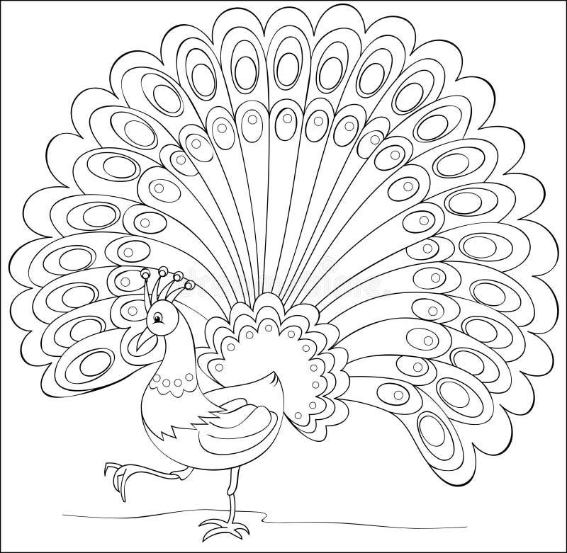 孔雀线彩色插图传染媒介模板.