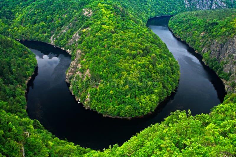 与黑暗的水和夏天绿色森林马掌弯,伏尔塔瓦河河,捷克共和国的河峡谷 与河的美好的横向 免版税库存照片