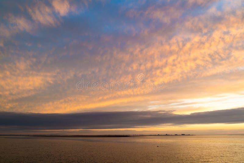 与登海尔德海岸线和游泳封印的Waddensea在太阳 库存图片