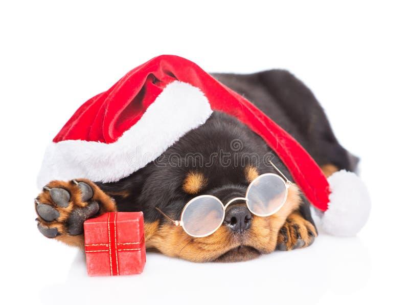 与玻璃的Rottweiler小狗,红色圣诞老人ha和礼物盒 在白色 库存照片