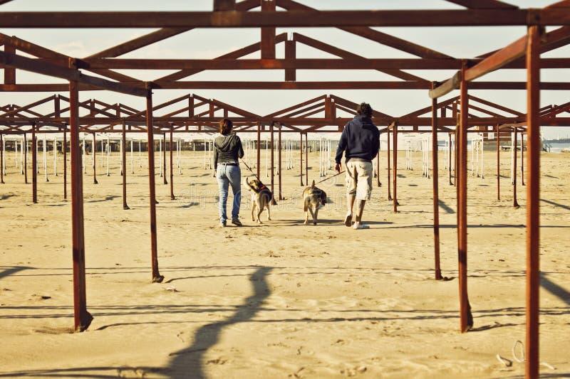 与他们的狗的两个所有者在海滩 免版税库存图片