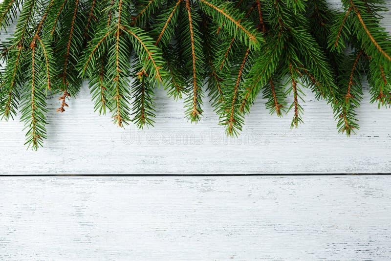与绿色分支的圣诞节横幅 免版税库存图片