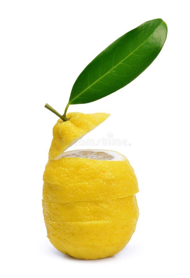 与绿色叶子的切的柠檬 库存照片