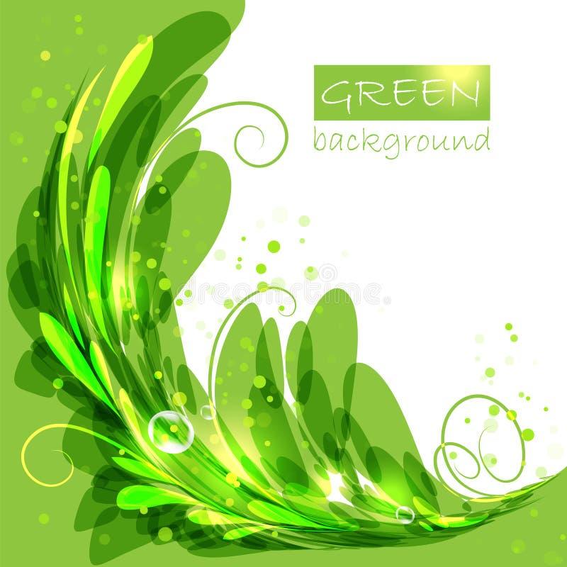 与绿色叶子的卵形框架 皇族释放例证