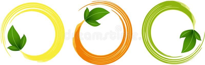 与绿色叶子的圈子框架 皇族释放例证