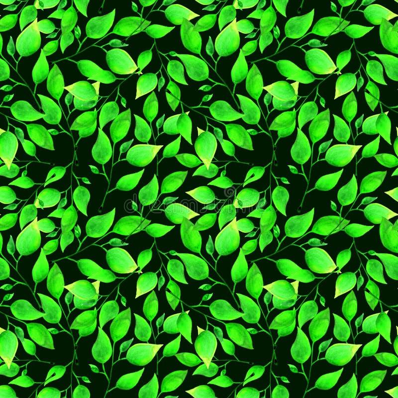 与绿色叶子的无缝的水彩样式在深绿背景 手拉不尽的艺术品 0 8可用的eps花卉版本墙纸 向量例证