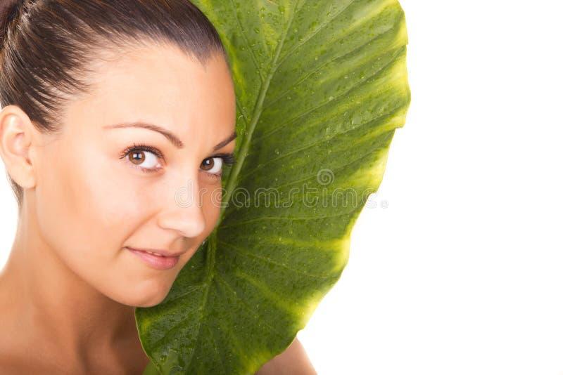 与绿色叶子的美丽的妇女特写镜头面孔画象 库存照片