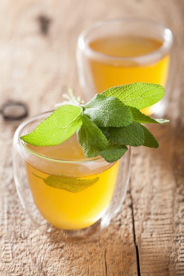 与绿色叶子的草本贤哲茶在玻璃杯子 库存图片