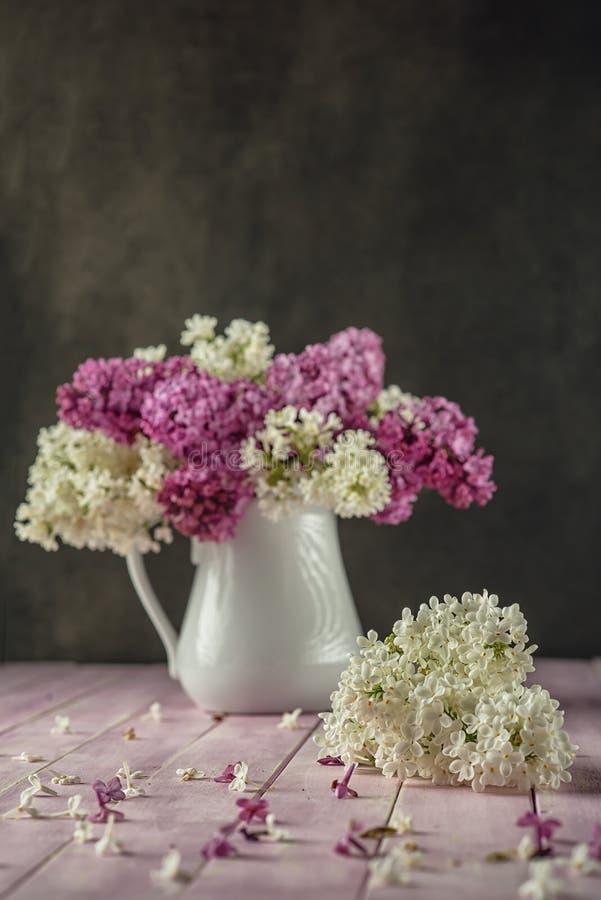 与紫色和白色丁香的静物画在桃红色桌,宏指令,有瓣的春天开花的植物上的白色花瓶 库存照片