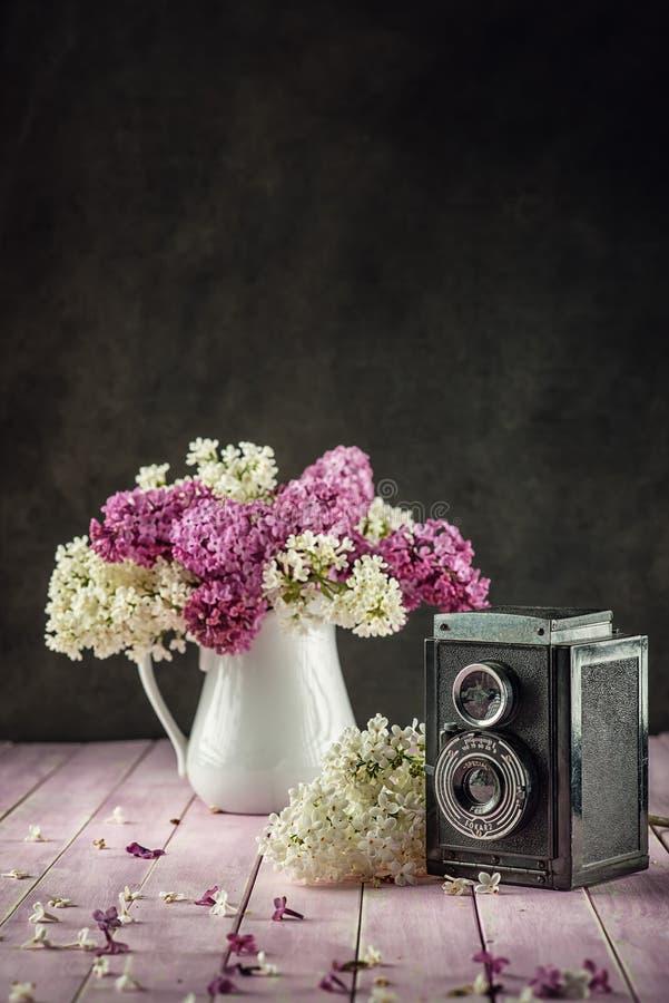 与紫色和白色丁香的静物画在桃红色桌,宏指令,有瓣的春天开花的植物上的白色花瓶 库存图片