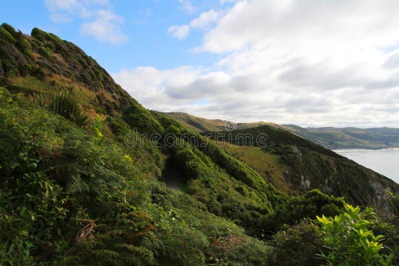 与绿色山和海洋,南部的风景路线的蓝天 库存图片