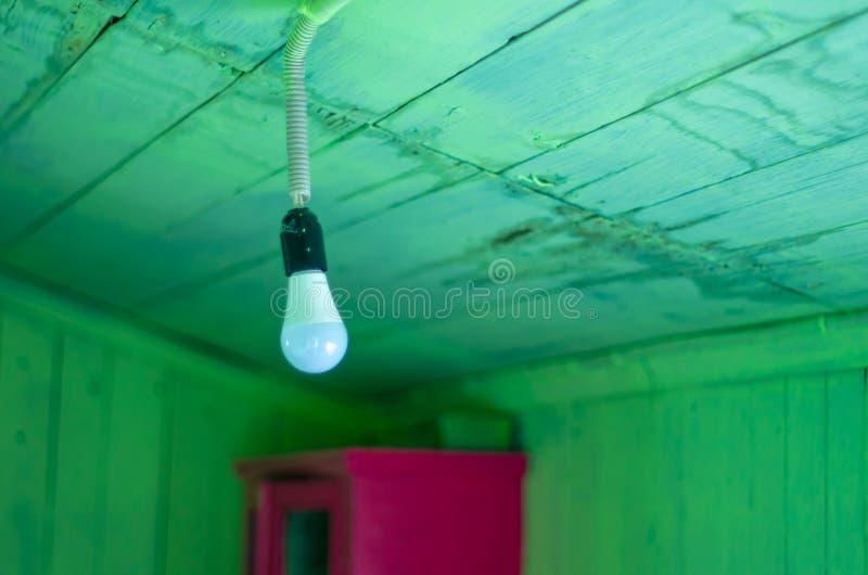 与绿色木板条的垂悬的现代电灯泡 免版税库存照片