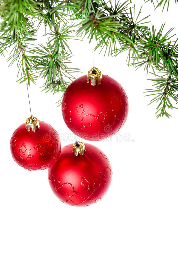 与绿色杉木的圣诞节装饰或冷杉和红色roud球或者 库存照片