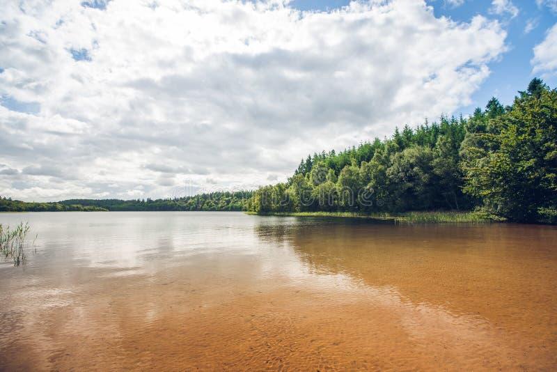 与绿色树的美好的湖风景 库存照片