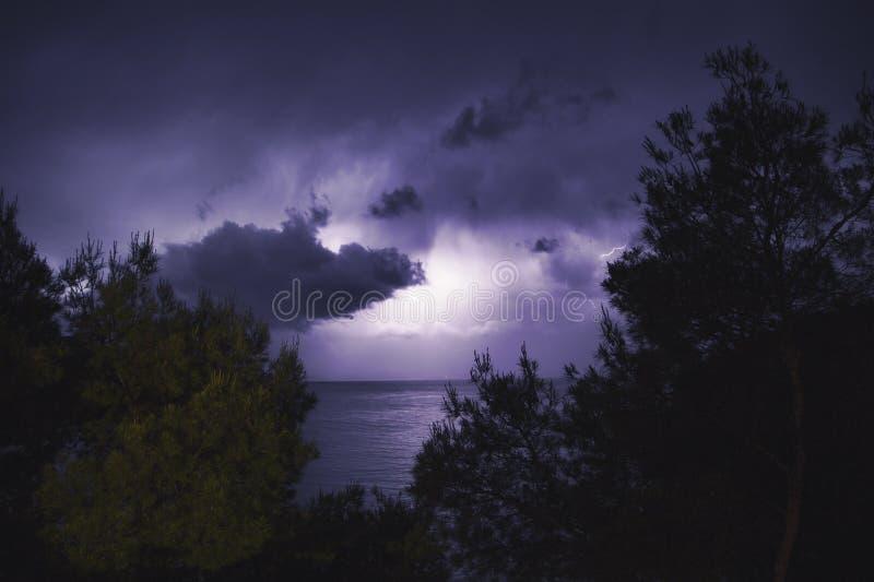 与紫色树荫的照明设备风暴 图库摄影