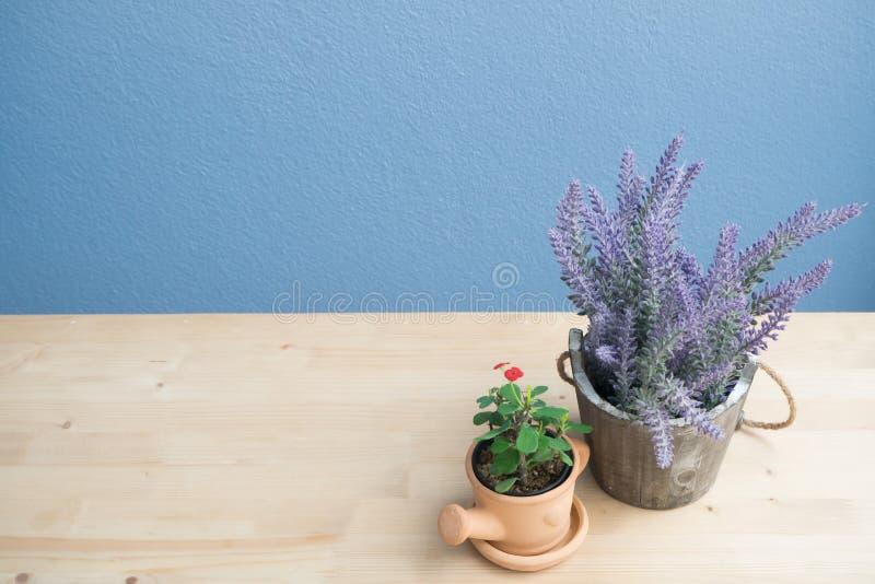 与紫色淡紫色花的木桌和大戟属milli在花盆和混凝土墙开花 库存图片