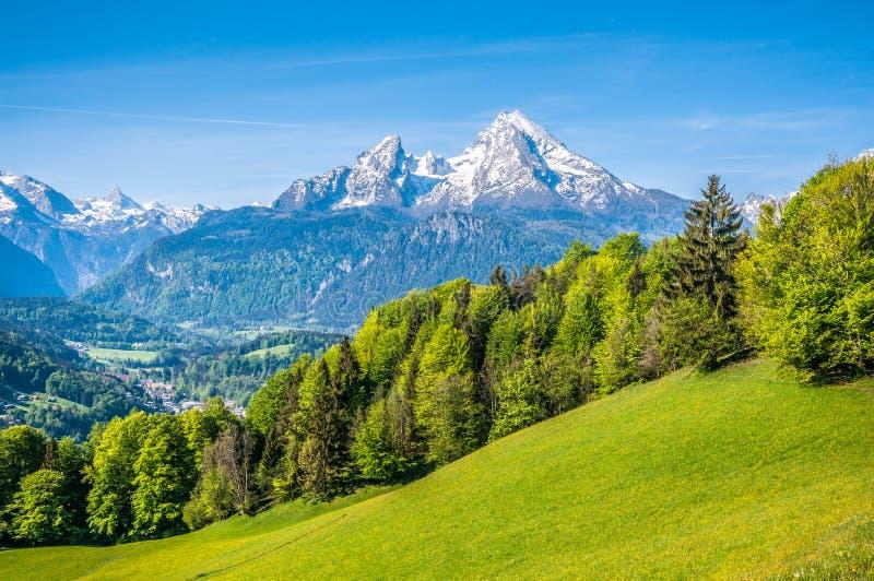 与绿色草甸、农舍和多雪的山上面的田园诗高山风景 图库摄影