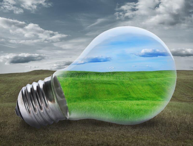 与绿色领域的电灯泡 免版税图库摄影