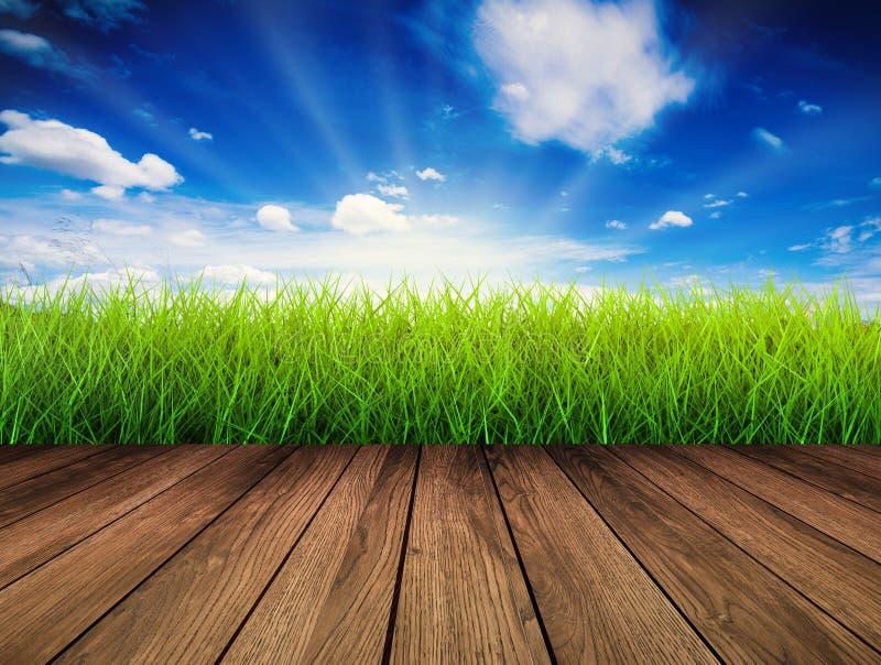 与绿草的木地板 免版税库存图片