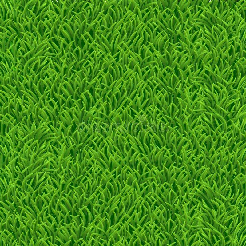 与绿草的本质背景 也corel凹道例证向量 免版税库存照片