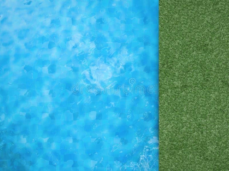 与绿草的水池顶视图 库存照片