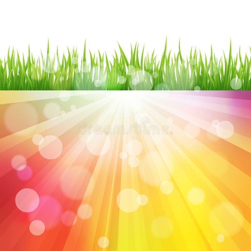 与绿草领域的明亮的传染媒介颜色太阳作用背景 Bokeh 皇族释放例证
