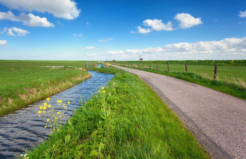 与绿草领域,路,灯塔的美好的风景 免版税库存照片