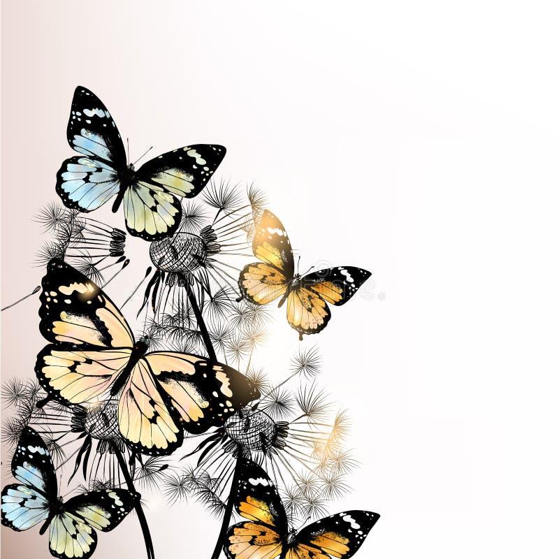 与蝴蝶和蒲公英的花卉背景 库存例证