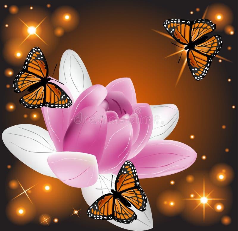 与蝴蝶的美丽的莲花在发光的背景