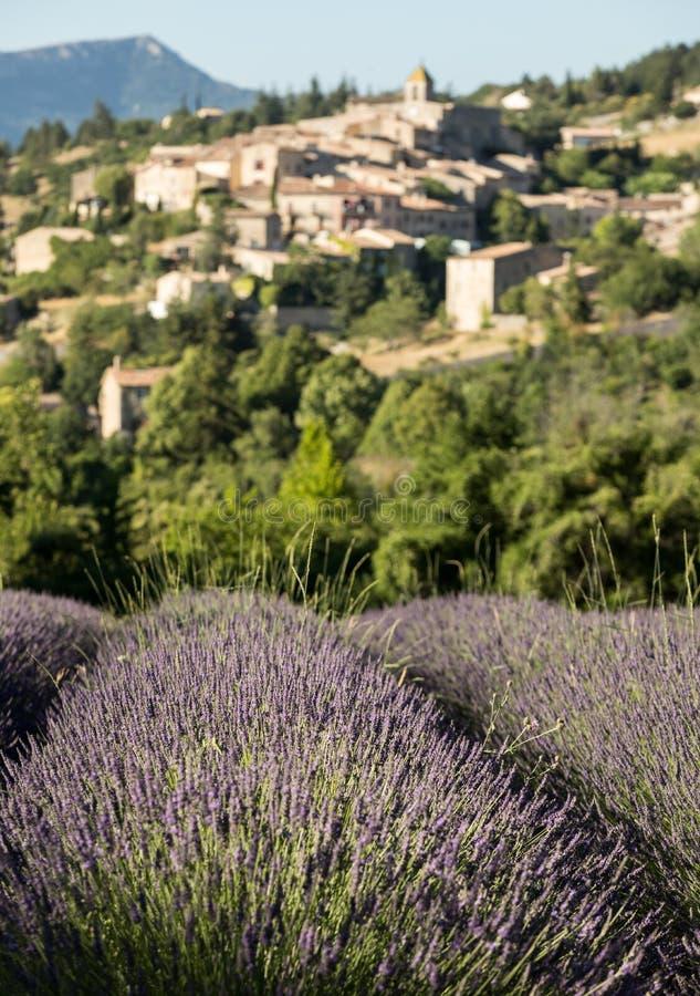 与以远Aurel村庄的淡紫色领域,横谷,普罗旺斯, 免版税图库摄影