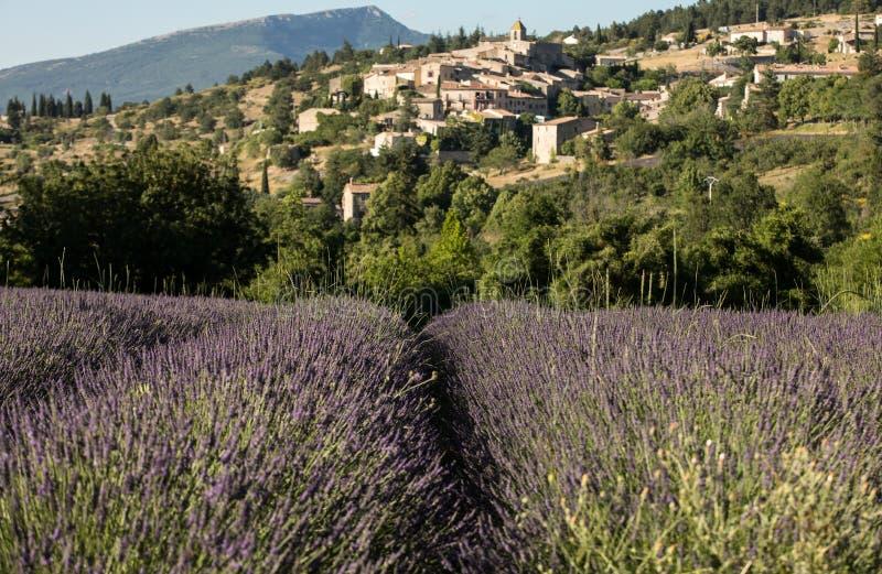 与以远Aurel村庄的淡紫色领域,横谷,普罗旺斯, 免版税库存图片