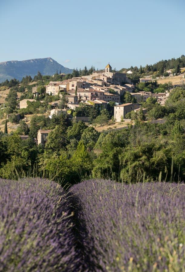 与以远Aurel村庄的淡紫色领域,横谷,普罗旺斯 库存图片