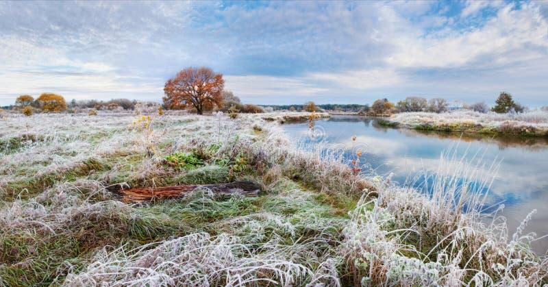 与结霜的草、一棵孤立红头发人橡木、河和美丽的多云天空的一个美好的秋天风景 免版税库存图片