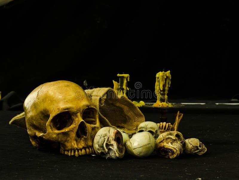 与头骨的静物画 免版税库存照片