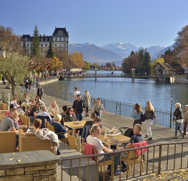 与Aare湖和阿尔卑斯山的秋天风景从在图恩 瑞士 免版税库存照片