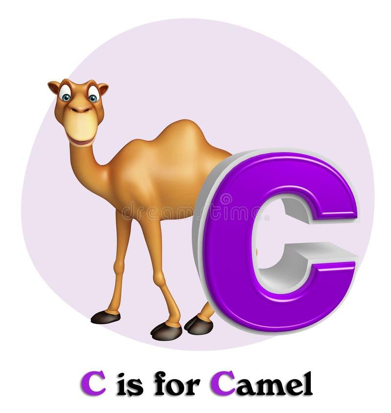 与alphabates的骆驼domastic动物 库存例证