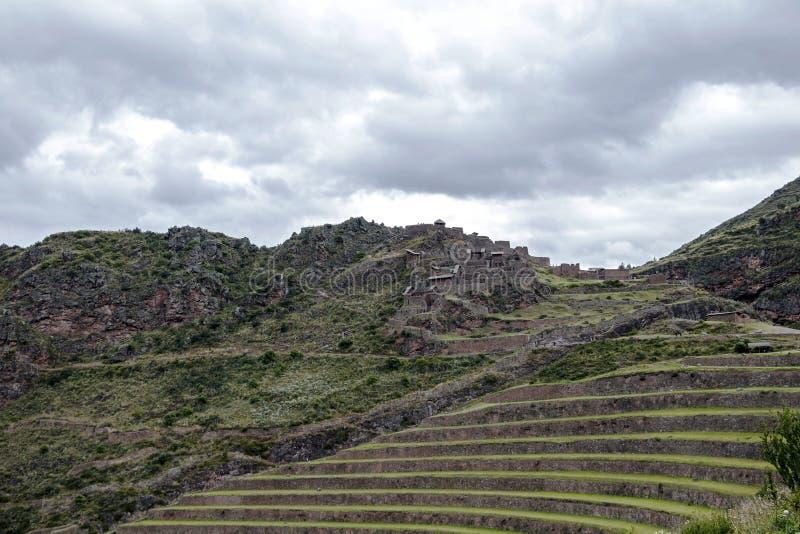 与Andens,象农业大阳台dugs的楼梯的因卡废墟到一个山坡的倾斜里在皮萨克考古学公园,秘鲁 库存图片