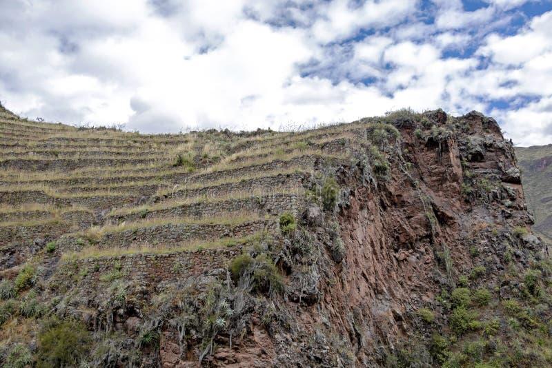 与Andens,象农业大阳台dugs的楼梯的因卡废墟到一个山坡的倾斜里在皮萨克考古学公园,秘鲁 免版税库存图片