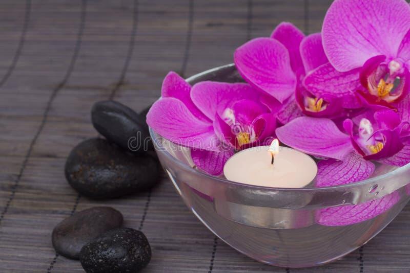 与candels的兰花 免版税库存图片