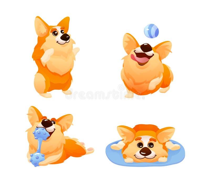 与differents姿势的小狗狗,头发的小狗看起来fox-like 向量例证