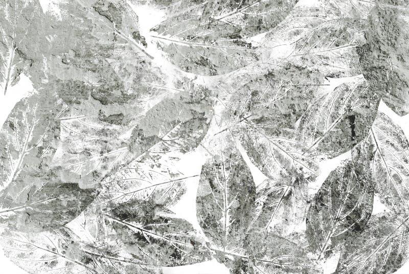 与leafprints的织地不很细背景 库存图片
