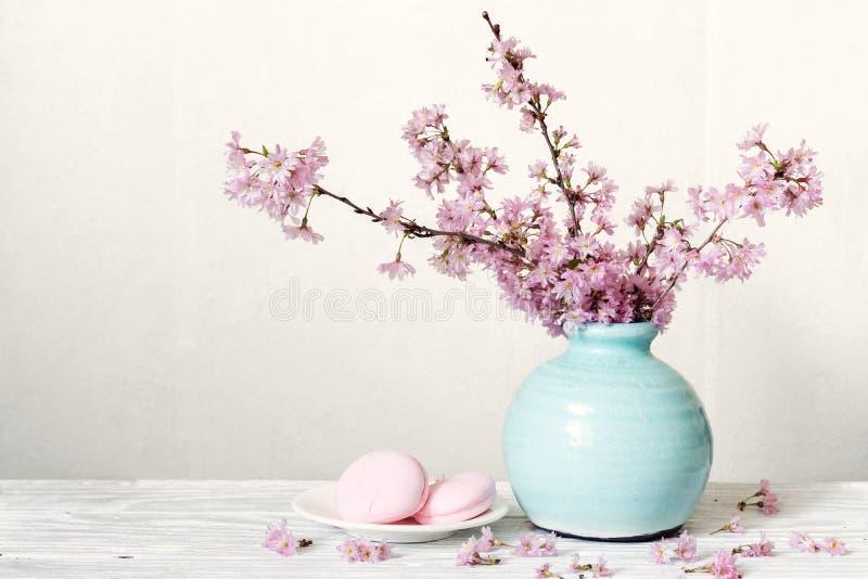与macarons的桃红色樱花花花束在白色木背景的蓝色葡萄酒花瓶 免版税图库摄影