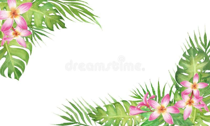 与monstera、在白色背景和花赤素馨花的水彩热带边界框架隔绝的棕榈树叶子 库存例证