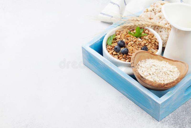 与muesli、莓果和牛奶的健康早餐 免版税库存照片