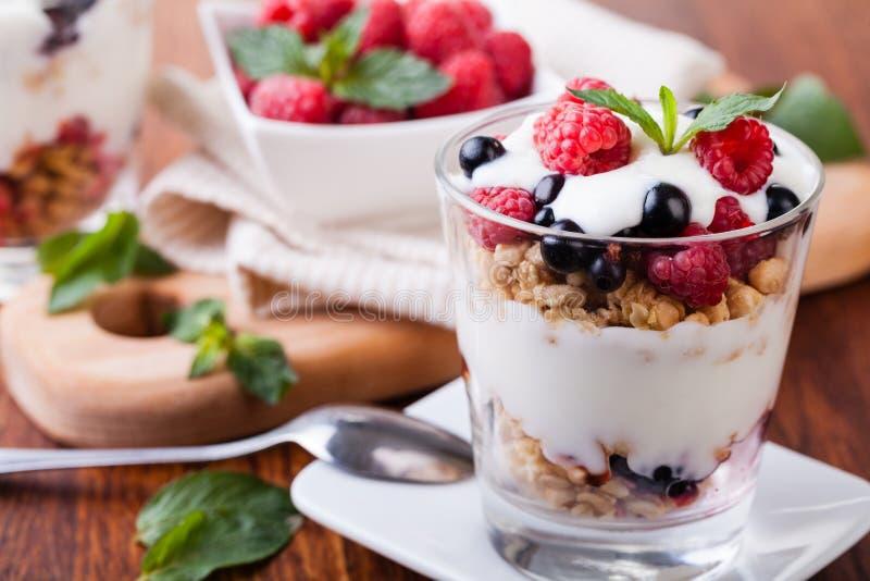 与muesli和浆果的酸奶 库存照片