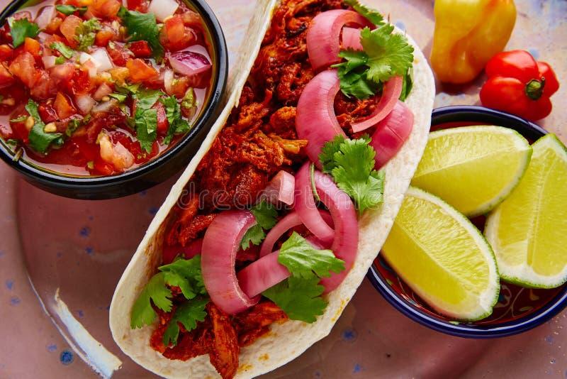 与pico de加洛的Cochinita Pibil墨西哥食物 库存图片